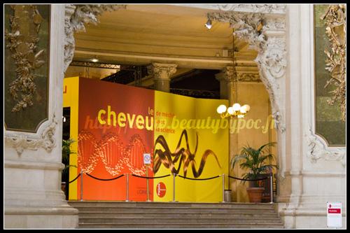 Expo Cheveu Palais de la Découverte
