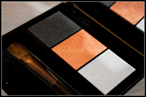 Shiseido Ombre Doux Eclat Trio OR302 Fire